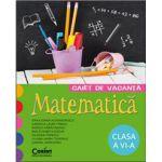 Caiet de vacanta - matematica pentru clasa a VI-a