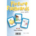 Set Sail 1, Picture FLASHCARDS, Curs limba engleza - Jenny Dooley
