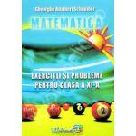 Matematica-Exercitii si probleme, clasa a XI-a (Adalbert Gheorghe Schneider)