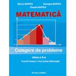 Matematica. Culegere pentru clasa a X-a - Marius Burtea