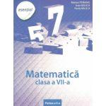 Matematica clasa a VII-a - Esential (Partea II)
