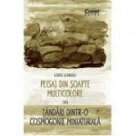 Peisaj din soapte multicolore sau Tandari dintr-o cosmogonie miniaturala - Liviu Lungu