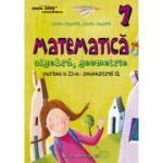 Matematica algebra, geometrie clasa a VII-a partea II, sem. 2 (mate 2000 Consolidare 2015-2016) - Anton Negrila