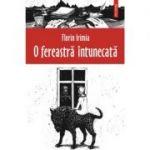 O fereastra intunecata (Florin Irimia)
