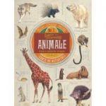 Animale - O lume a creaturilor minunate. Carte de activitati cu puzzle, stikere si poster