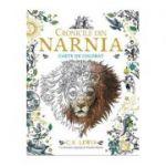 Cronicile din Narnia - carte de colorat C. S. Lewis