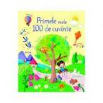Primele mele 100 de cuvinte (Usborne) - Usborne Books
