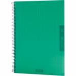 Caiet LeColor Fines, A4, matematica, 100 file, verde(CI834013)