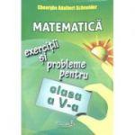 Matematica exercitii si probleme pentru clasa a V-a