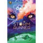 The Storm Runner - J. C. Cervantes