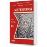 Matematica. Manual pentru clasa a XI-a, M4 - Mihaela Singer