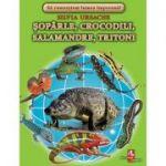 Soparle, crocodili, salamandre, tritoni - Silvia Ursache