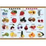 Plansa legume / fructe, plastifiata cu agatatoare