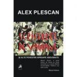 Scriitorul de vagoane - Alex Plescan