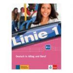 Linie 1 B1. 1, Kurs- und Übungsbuch mit DVD-ROM. Deutsch in Alltag und Beruf - Stefanie Dengler