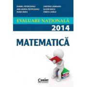 Evaluare nationala 2014-Matematica (Petriceanu Daniel)