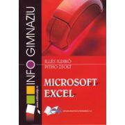 Microsoft Excel - gimnaziu