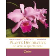 Plante decorative de sera si apartament