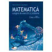 Matematica. Culegere de exercitii si probleme, clasa a VII-a - Petre Simion, Ion Marin