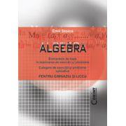 Algebra-Culegere de exercitii si probleme aplicative pentru gimnaziu si liceu