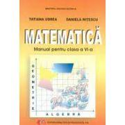 Matematica, manual pentru clasa a VI-a ( Daniela Nitescu )