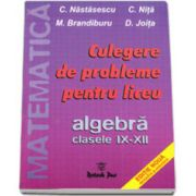 Probleme de matematica pentru liceu, Algebra, Clasele IX-XII (C. Nastasescu si C. Nita)