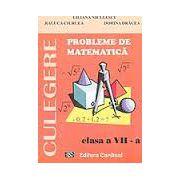 CULEGERE. Probleme de matematica, clasa VII-a (Liliana Niculescu)