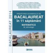 Pregatirea examenului de matematica la Bacalaureat 2014 in 11 saptamani - Constantin Angelescu