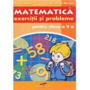 Culegere de matematica pentru clasa a II a - Niculina Ilarion