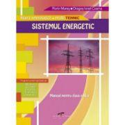 Manual pentru clasa a XI-a. Sistemul energetic - Florin Mares, Dragos Ionel Cosma