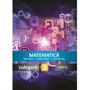 Matematica - culegere pentru clasa a III-a
