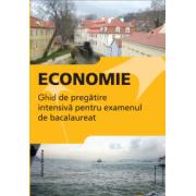 Ghid de pregatire intensiva la economie. Bacalaureat 2015(Gabriel Hacman)