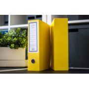 Biblioraft Albo + cutie de protectie, galben (202020)