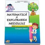 Matematica si explorarea mediului. Culegere clasa I - Valentina S. Caradeanu