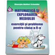 Matematica si explorarea mediului-Exercitii si probleme, clasa a II-a (Gheorghe Schneider)