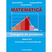 Matematica - culegere pentru clasa a X-a