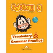 Set Sail 3. Vocabulary and Grammar Practice, Curs pentru limba engleza, clasa III-a
