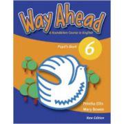 Way Ahead 6, Manual de limba engleza pentru clasa a VIII-a (Pupil's Book)