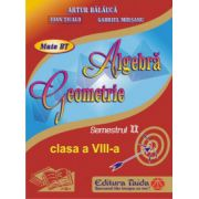Auxiliar de Algebra si Geometrie - clasa a VIII-a, sem II (2014)