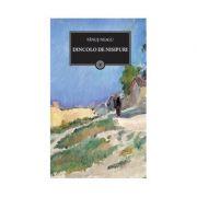 Dincolo de nisipuri - Fanus Neagu