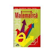 Matematica clasa a VIII-a. Culegere - Dana Stan