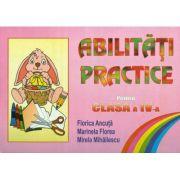 Abilitati practice pentru clasa a IV-a (Florica Ancuta)