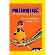 Matematica. Exercitii si probleme clasa a VI-a, sem. II 2012-2013 - Cornel Moroti