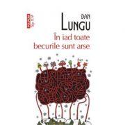 In iad toate becurile sunt arse - Dan Lungu
