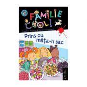 O FAMILIE COOL, Vol IV - Prins cu mata-n sac