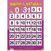 Numere Naturale De la 0 la 31, plansa