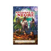 Indiile Negre - Jules Verne (Editie ilustrata)