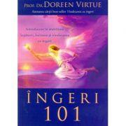 Ingeri 101 - Introducere in stabilirea legaturii, lucrarea si vindecarea cu ingeri