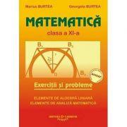 MATEMATICA. Exercitii si probleme - Clasa a XI-a (Georgeta Burtea)