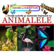 Invata culorile si numerele impreuna cu animalele de Diana Rotaru (1162)